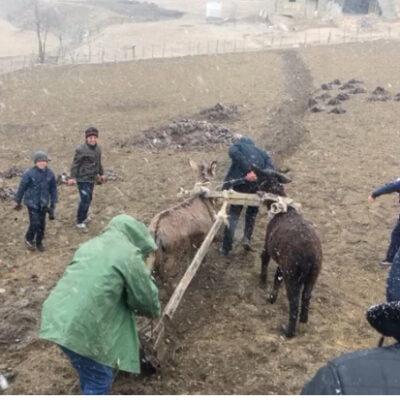 День первой борозды отметили в селении Хуршни